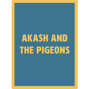 akash and the pigeons