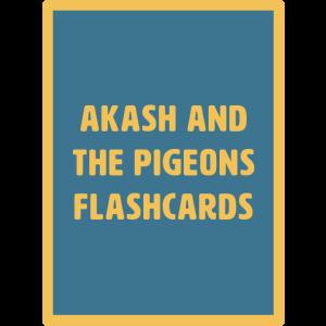 akash flashcards