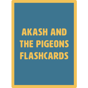 akash flashcards